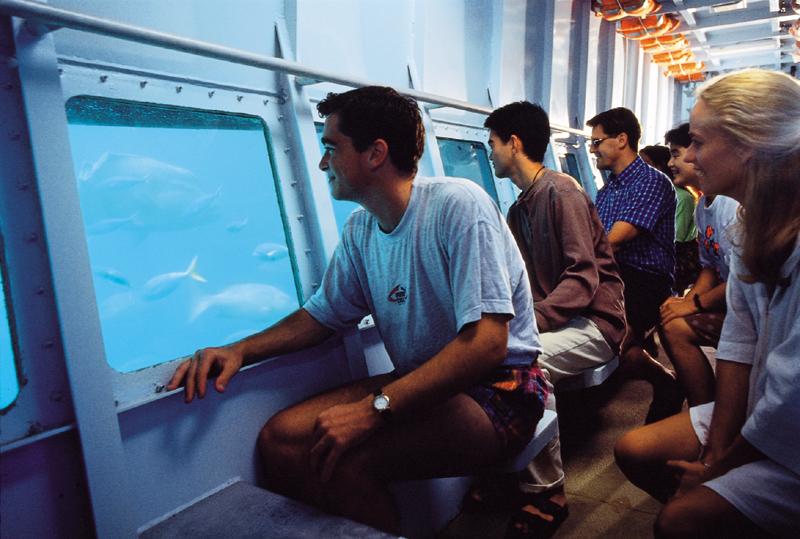 <p>こちらはポンツーンから乗船可能な半潜水艦。目の前に広がるアウターリーフを服を着たまま、濡れることなく楽しめます。窓の外は沢山の魚が行きかい、まるで動く水族館のよう。</p>