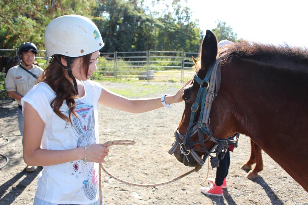 <p>お馬さんはとっても大人しく、人懐っこい。</p>