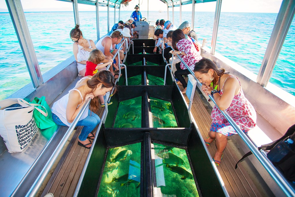 <p>グリーン島で乗船可能なグラスボトムボート。島の周りのリーフにはどんな生物が生息しているのか一目瞭然。泳げなくても水に濡れることなく楽しめるので、気軽に参加できると人気のアクティビティー。</p>
