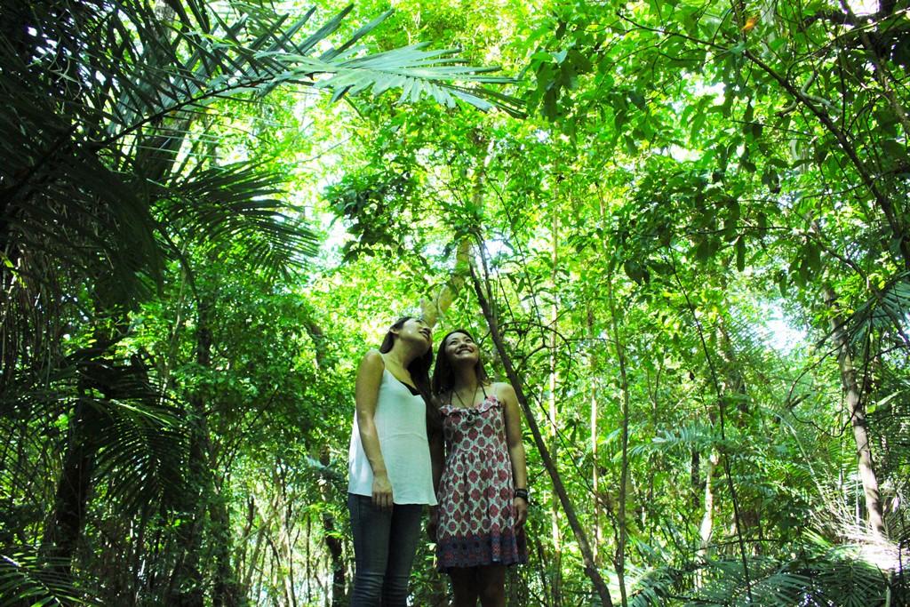 <p>海だけじゃない!!グリーン島はGBRにある数々の島の中でも唯一、サンゴの砂が積もってできた島の上に熱帯雨林が茂る貴重な自然環境の島。マイナスインをたっぷり浴びながらの島内散策もおススメ。珍しい鳥や植物にも遭遇可能です。</p>