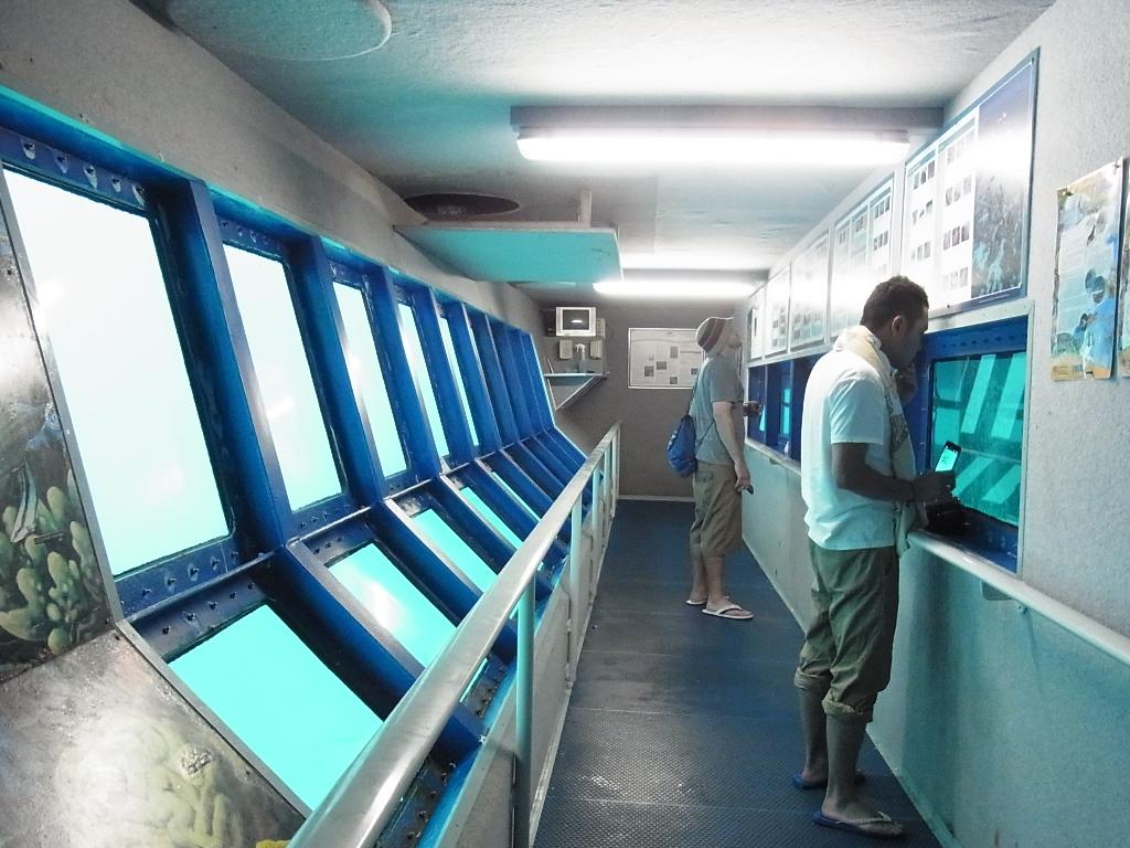 <p>こちらもポンツーンに設置されている海中展望室。壁には、ポンツーンの周りで見ることのできる魚たちの説明が書かれているので、シュノーケリングで見た魚の名前をココでチェックすることも可能。また自由に見学できるのでちょっとした空き時間も無駄にすることなくGOOD‼</p>