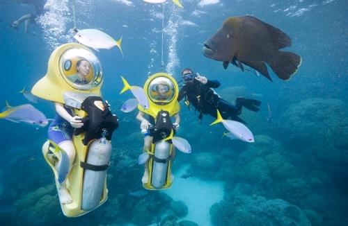 <p>日本人スタッフと一緒で言葉も安心。 水中へは少人数制で、ガイドが楽しく案内してくれます。</p>