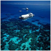 <p>お昼はポンツーンで思いっきり海遊び! ヘリパッドからポンツーンへは小舟で移動。 ランチ&シュノーケル機材レンタル込みなので泳いで食べて満喫しよう。</p>