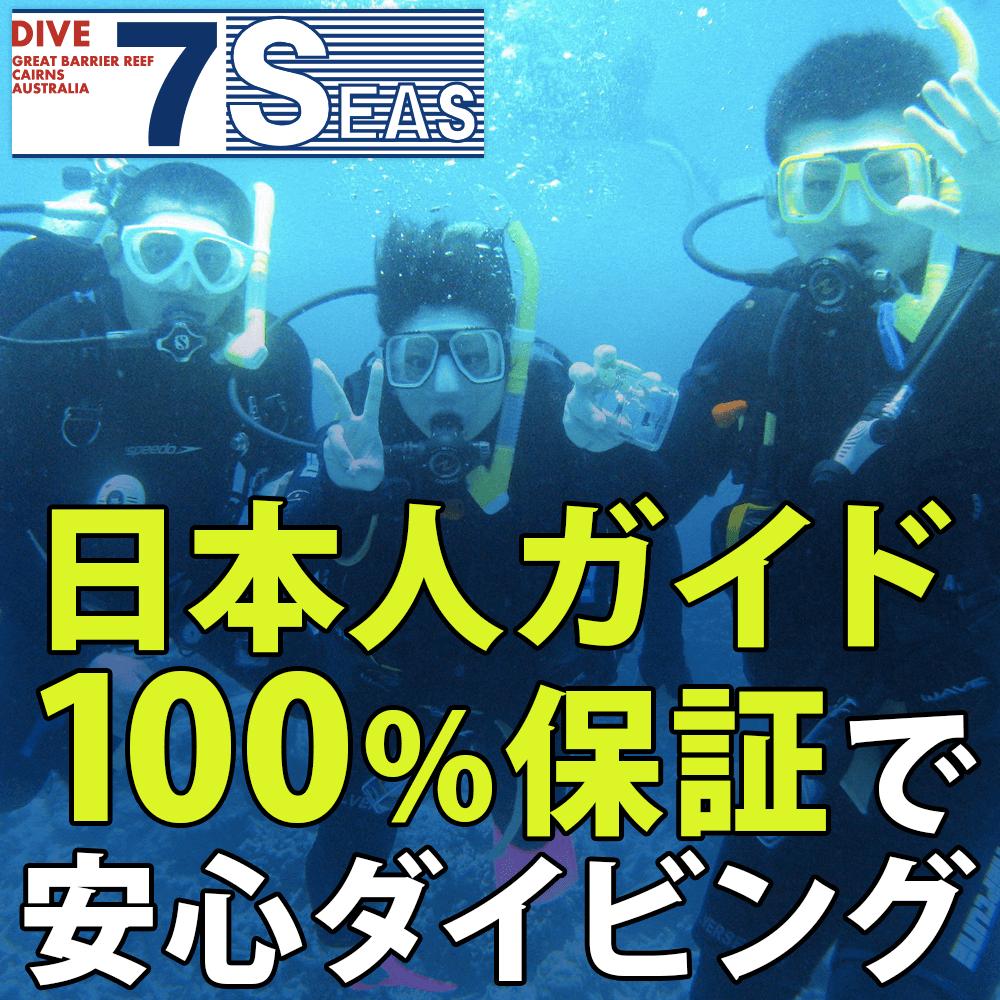 日本人ガイド100%保証で安心ダイビング! DIVE 7 SEAS
