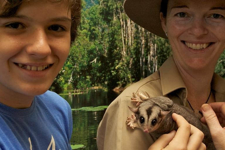 <p>目がクリクリでとっても可愛いフクロモモンガ。種によっては絶滅危惧種に指定されています。</p>