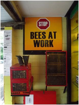 <p>ハチミツは、ライチに似たLONGON、アボカド、マンゴーなど トロピカルな植物からの出来たすべて地元産。</p>