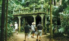 <p>熱帯雨林の中で朽ち果ててしまっても尚美しい姿が、宮崎アニメ『天空の城ラピュタ』のモデルになったと噂されるパロネラパーク。ここでは1回の入場券でたくさんの体験が出来ます。</p>