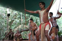 <p>・パマギリ族による先住民文化体験 オーストラリアの先住民族であるアボリジニの文化を参加体験出来るチャンスです。 ここでは 2つのアトラクションを通してアボリジニ文化を体験していただけます: パマギリ族の伝統的なダンスショーは熱帯雨林の中に建つ円形劇場でご覧いただけます。ドリームタイムウォークツアーはアボリジニ文化の魅力の一部をご紹介します。</p>