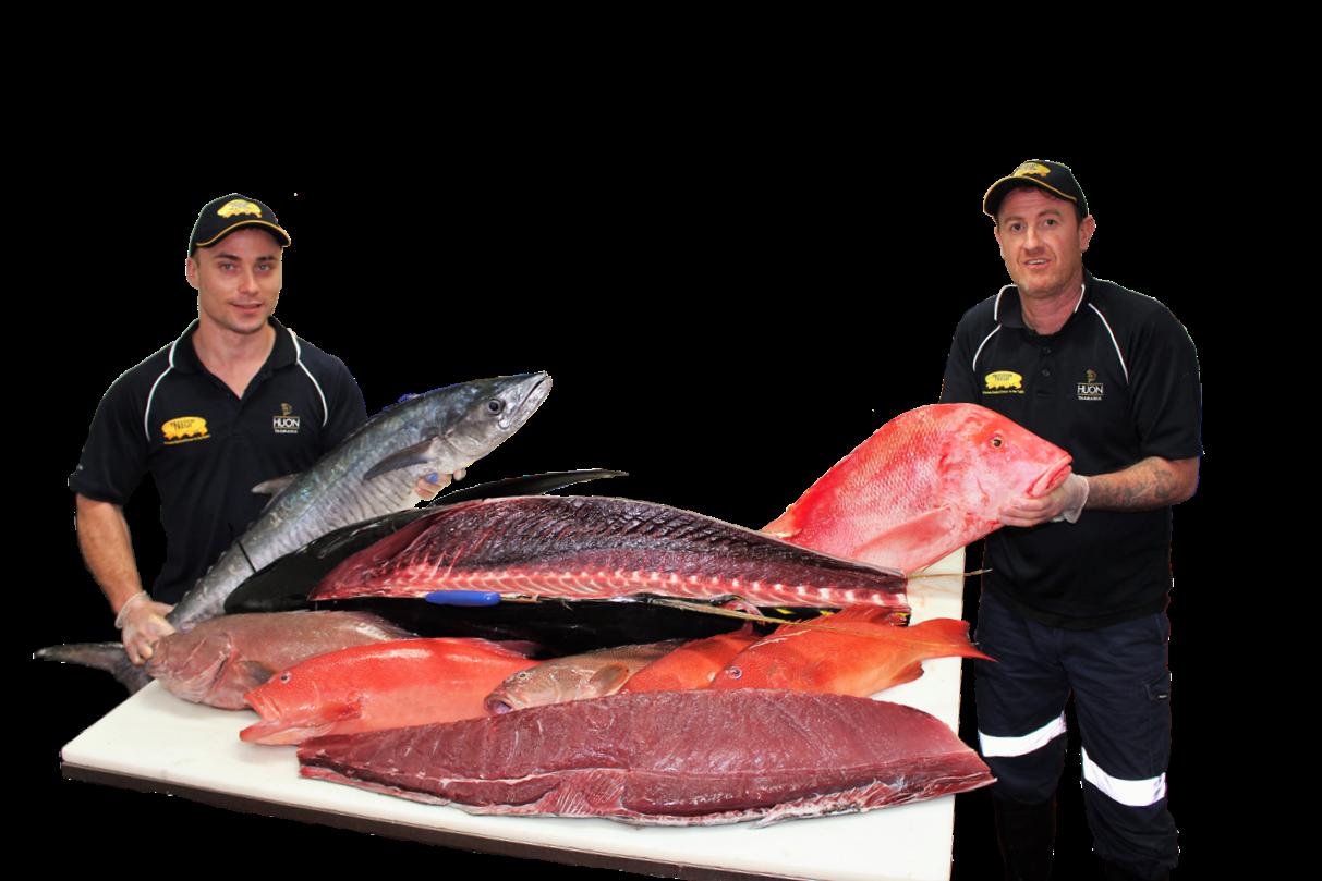 <p>ケアンズ在住の日本人の皆さんに美味しい魚を食べてもらいたいと 刺身で食べられるマグロやサーモンはもちろんのこと 他の魚屋さんではなかなか手に入らない 生食用のイカやホタテ、活け牡蠣や活けムール貝まで 取り揃えています。</p>