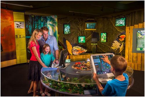 <p>/他にも最新設備の『熱帯雨林館』が登場。 ケアンズが誇る世界遺産でもある最古の熱帯雨林について いろんなことが学べます。 大型観光アトラクションとして数々の賞に輝くSKYRAIL。 ケアンズに来たら是非トライしてください。</p>
