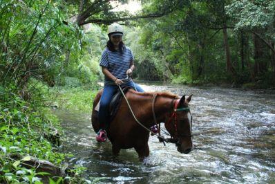 ケアンズで馬に乗ろう。