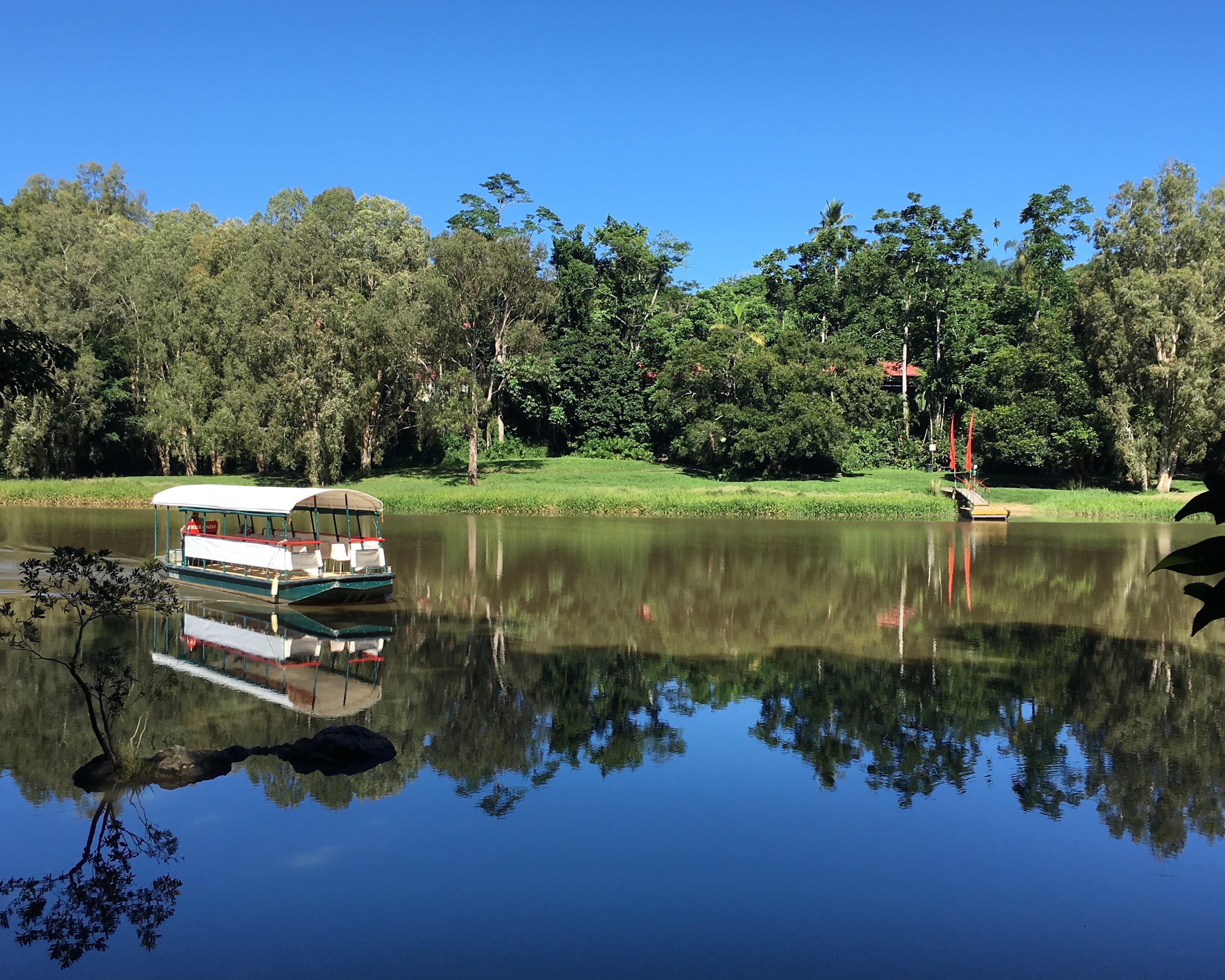 バロン川を爽快クルージング Kuranda Riverboat
