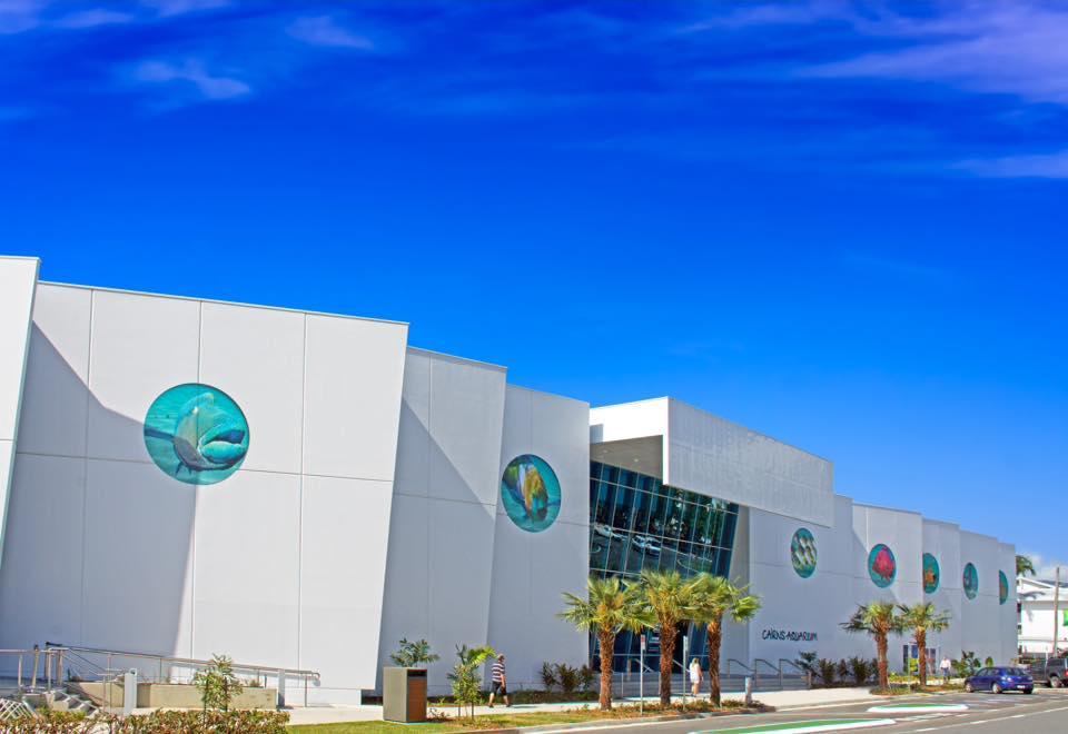 <p>ケアンズ近郊の山間部・熱帯雨林・マングローブ・サンゴ礁・深海を模して展示。</p> <p>ケアンズが誇る2大世界遺産の生態系が水族館を観ながら体感できる</p> <p>大人から子供まで楽しめる最新スポット&全天候型アミューズメント施設は外せません。</p>