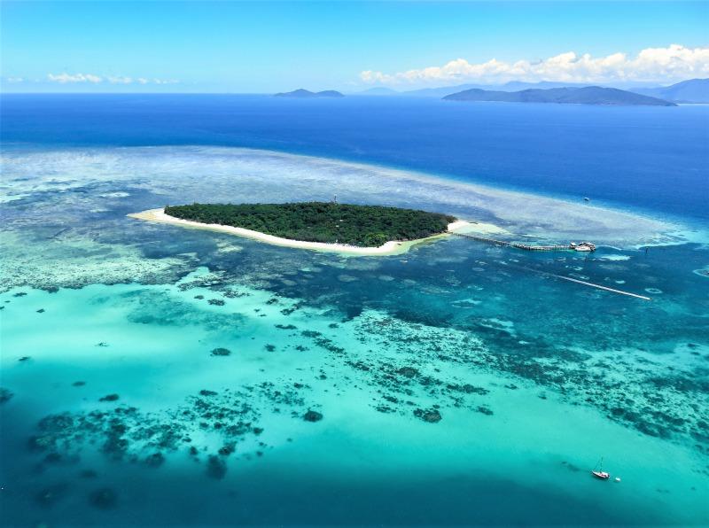 世界遺産グレートバリアリーフで大人気の「グリーン島」をご紹介!
